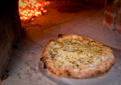 Rosemary, onion and blue cheese pizza