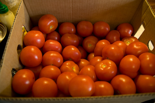how to make tomato sauce from fresh tomatoes for pizza