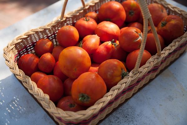 tomato sauce (1 of 1)