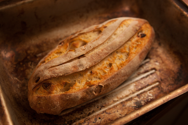 apple sourdough (5 of 9)